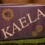 Passport to Kaela's Imagination